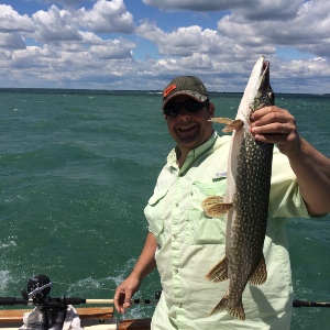fishbus charters testimonials